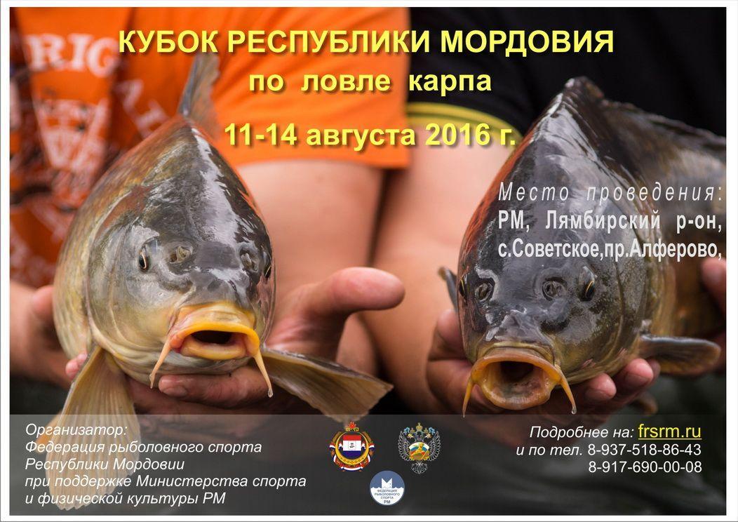 Чемпионат Республики Мордовия по ловле карпа